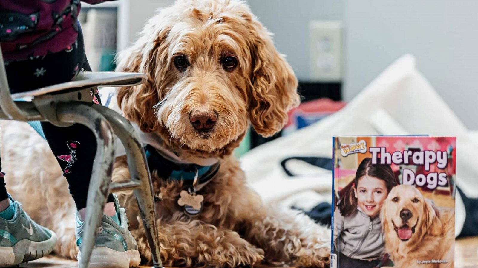 Therapy dog sitting next to a book about dog therapy